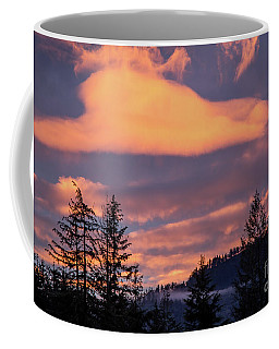 Coffee Mug featuring the photograph Winter Sunset by Nick Boren