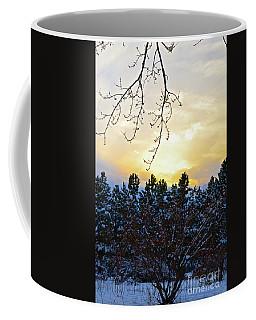 Winter Sunset On The Tree Farm #2 Coffee Mug