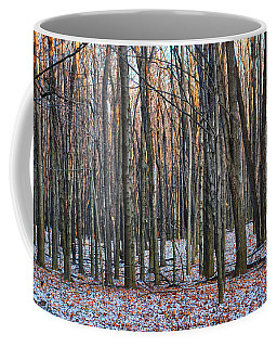 Winter - Uw Arboretum Madison Wisconsin Coffee Mug