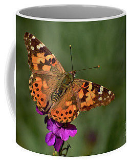 Coffee Mug featuring the photograph Winter Visitor by Debby Pueschel