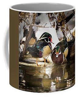 Winter Visitors - Wood Ducks Coffee Mug