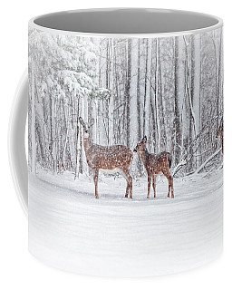Winter Visits Coffee Mug