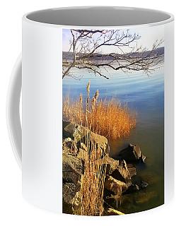 Winter Water Coffee Mug