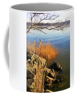 Winter Water Coffee Mug