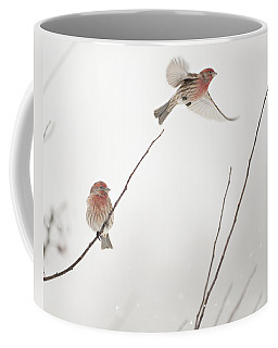 Winter Wind Surfing 2 Coffee Mug