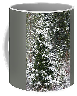Coffee Mug featuring the photograph Winter Woodland by Will Borden