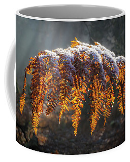 Winter Woods Coffee Mug