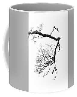 Coffee Mug featuring the photograph Wintered Over by Skip Willits