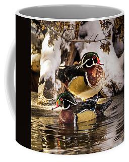 Wintering Wood Ducks Coffee Mug