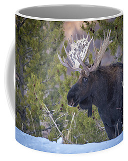 Winter's Arrival  Coffee Mug