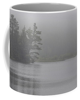 Wisconsin In Grey And Green Coffee Mug