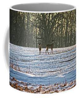 Wisconsin Whitetail Deer Coffee Mug