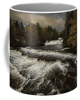 Wiscoy Falls Coffee Mug by Richard Engelbrecht