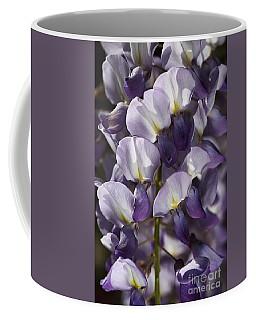 Wisteria In Spring Coffee Mug