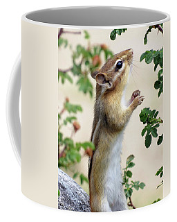 Within Reach - Chipmunk Coffee Mug
