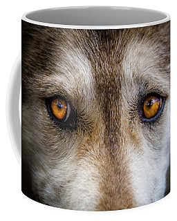 Wolf Eyes Coffee Mug