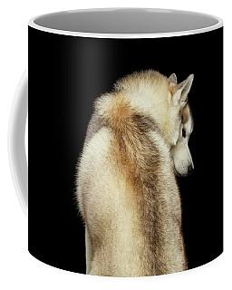 Coffee Mug featuring the photograph Wolf In Soul by Sergey Taran