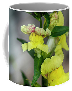 Wonderful Nature - Yellow Antirrhinum Coffee Mug
