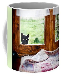 Wondering What's She... Better Investigate Coffee Mug