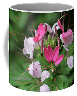 Wonders Of Cleome Coffee Mug