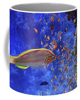 Wonders Of The Red Sea Coffee Mug