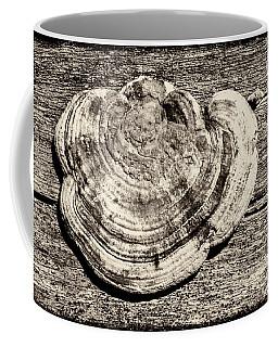 Coffee Mug featuring the photograph Wood Decay Fungi, Nagzira, 2011 by Hitendra SINKAR