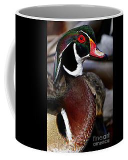 Wood Duck Cuteness Coffee Mug