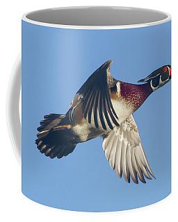 Wood Duck Flying Fast Coffee Mug