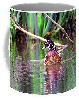 Wood Duck Looking Left Coffee Mug by Kathy Kelly