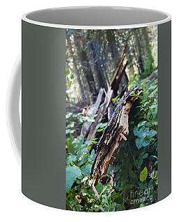 Wood In The Forest Coffee Mug