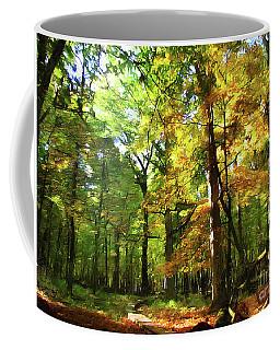Wood Plank Trail Coffee Mug