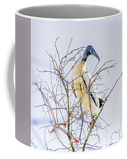 Wood Stork Sitting In A Tree Coffee Mug