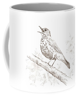 Wood Thrush Coffee Mug