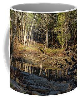 Wooded Backwash Coffee Mug