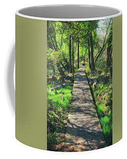 Wooded Path - Spring At Retzer Nature Center Coffee Mug by Jennifer Rondinelli Reilly - Fine Art Photography