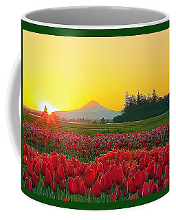 Wooden Shoe Tulip Fields Sunrise Coffee Mug