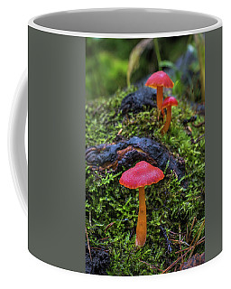 Coffee Mug featuring the photograph Woodland Floor Decor by Bill Pevlor