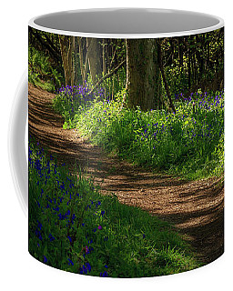 Woodland Path Lined By Bluebells Coffee Mug
