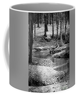 Coffee Mug featuring the photograph Woodland Stream by Maria Urso