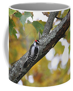 Woodpecker And Autumn Coffee Mug