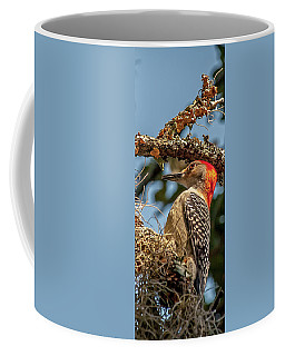 Woodpecker Closeup Coffee Mug