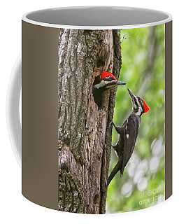 Woodpeckers Trading Places Coffee Mug