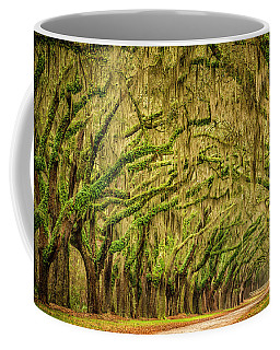 Coffee Mug featuring the photograph Wormsloe Drive by Phyllis Peterson