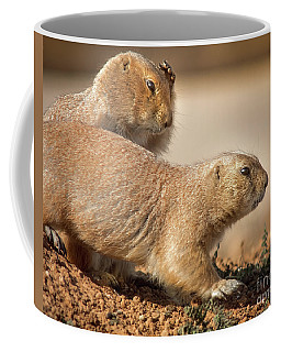 Coffee Mug featuring the photograph Worried Prairie Dog by Robert Frederick