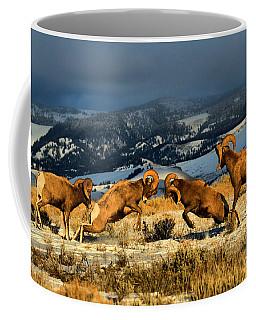 Wyoming Bighorn Brawl Coffee Mug