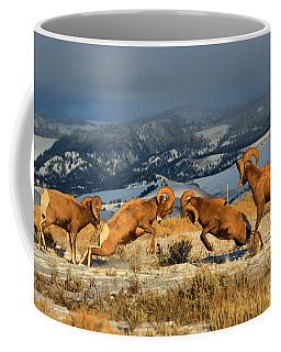 Wyoming Bighorn Brawlers Coffee Mug