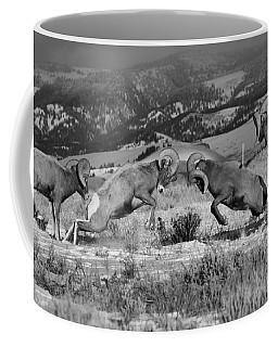 Wyoming Bighorn Brawlers Crop Black And White Coffee Mug