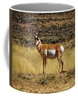 Wyoming Pronghorn Buck Coffee Mug