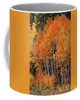 Wyoming Splendor Coffee Mug
