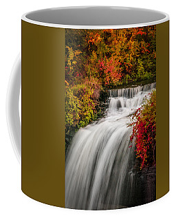 Fall At Minnehaha Falls Coffee Mug